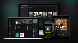 For ten quid a month, you can stream almost everything from almost everywhere (Picture: Spotify)